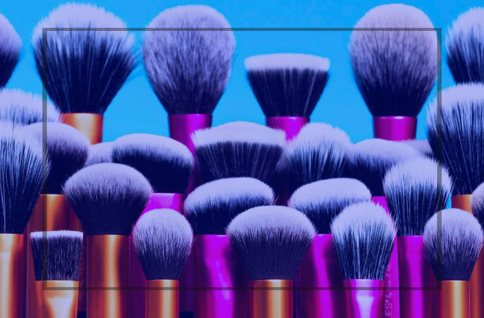 Top 10 Best Blusher Brush